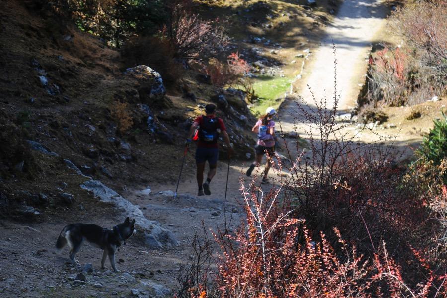 manaslu trail run