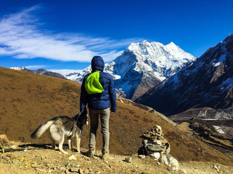 trekker and dog in dharmashala